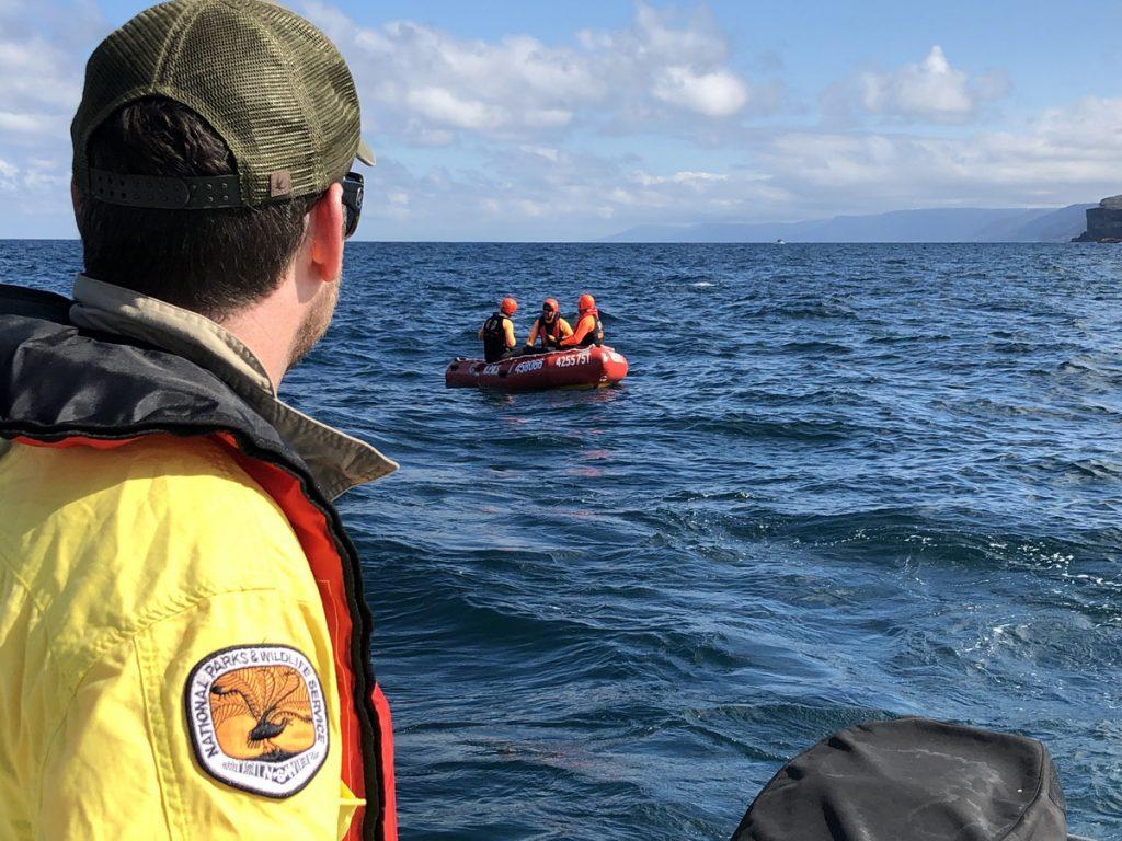 Wattamolla Whale Rescue NPWS