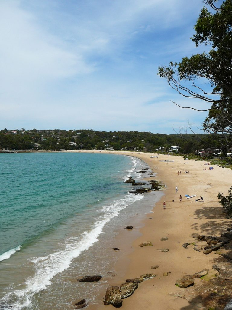 Horderns Beach from Cabbage Tree Point